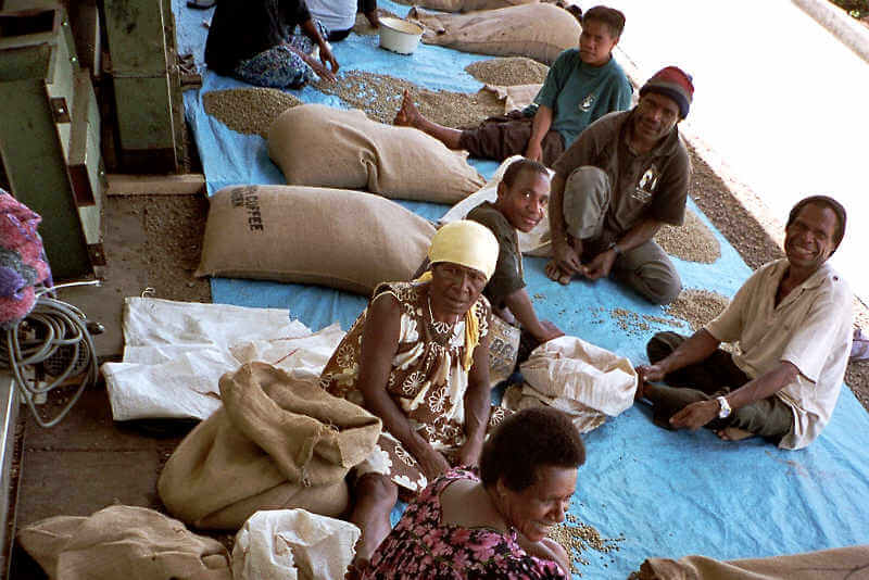 direct trade sorgt für gute Qualität der Kaffeebohnen
