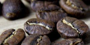 hochwertige kaffeebohnen von einer Spezialitätenrösterei