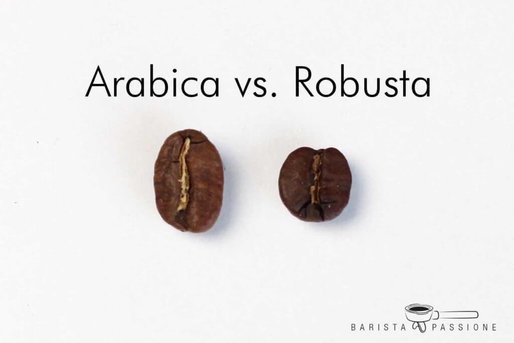 unterschiede-arabica-vs-robusta