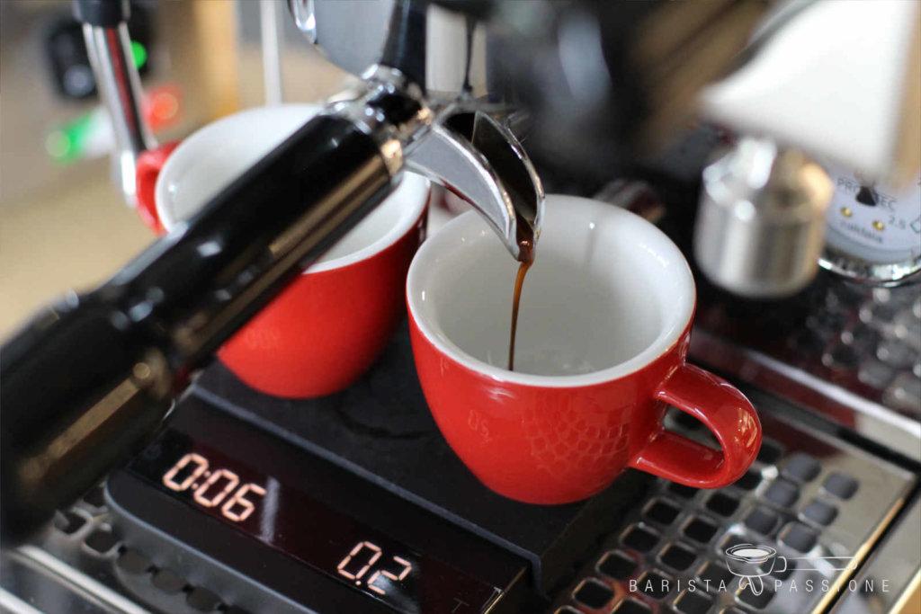 espresso_profitec-pro-300
